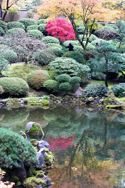 Portland Japanese Garden  11-11-11  3511.jpg
