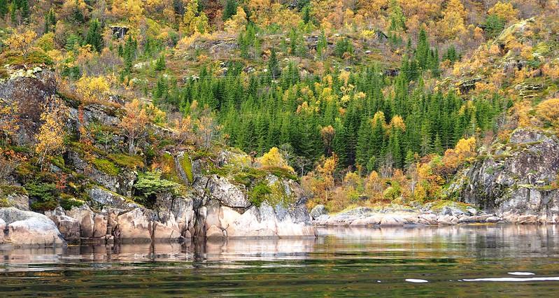 Cruise to Trollfjorden (16).JPG