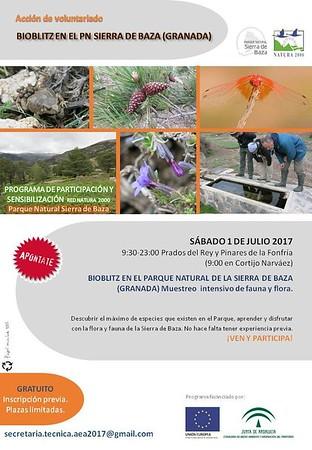 Bioblitz Sierra de Baza (julio `17)