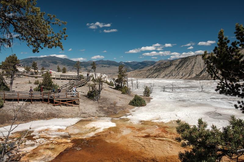 Mammoth-Hot-Springs-Yellowstone-Mroczek-2834.jpg