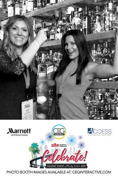 2018-12-10 SITE SoCal at Hotel Del Coronado