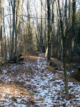 Trail Work Winter 2016