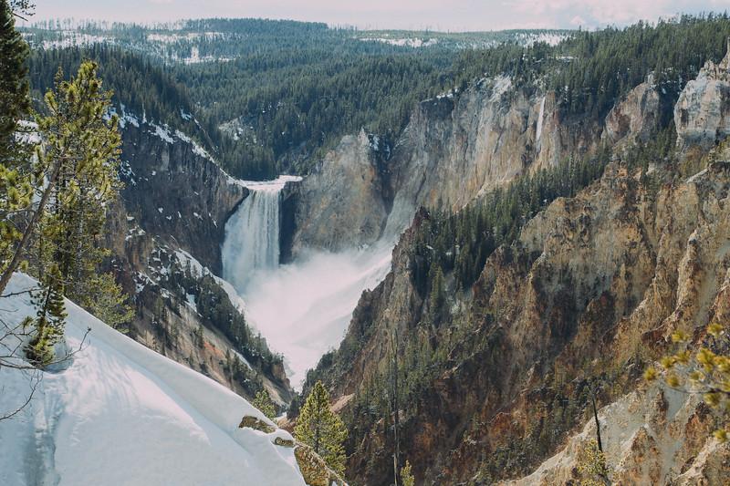 Yellowstone Photography ~ -1437.jpg