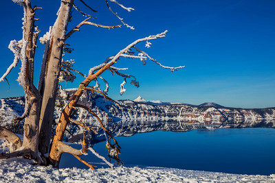 Friday Foto - Crater Lake