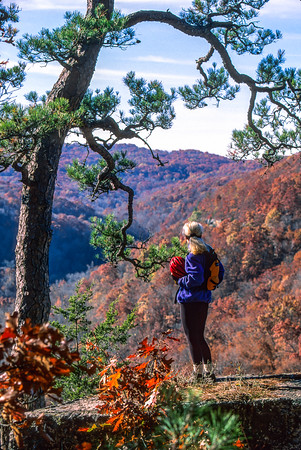 Biker in Buffalo Wilderness Area - Hiking to Hawksbill Crag (3 Miles Roundtrip)  --  Adventure Cycling's Central Loop