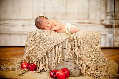 Salas Family Newborn 2017