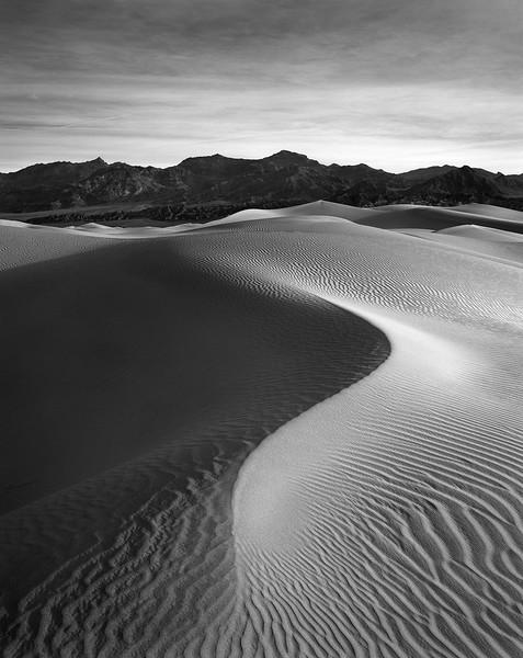 Mesquite Dunes Vertical B&W 1.jpg