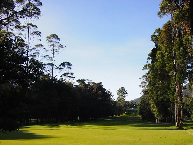 P2168550-golf-course.JPG