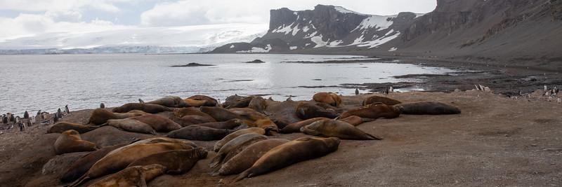2019_01_Antarktis_01912.jpg