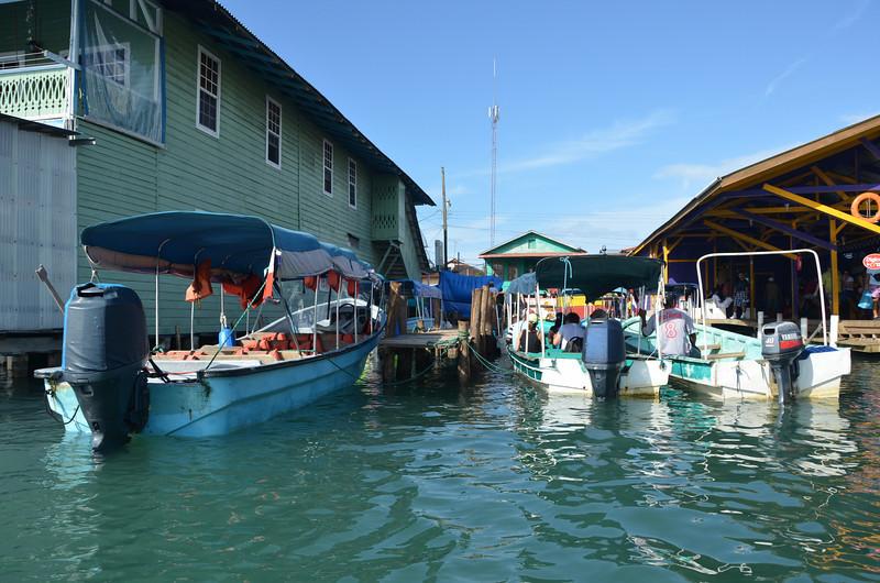 Bocas del Toro Boat Tour 9.jpg