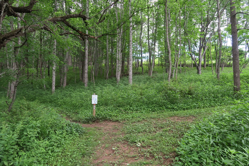 Hickory Trail (Loop Junction)