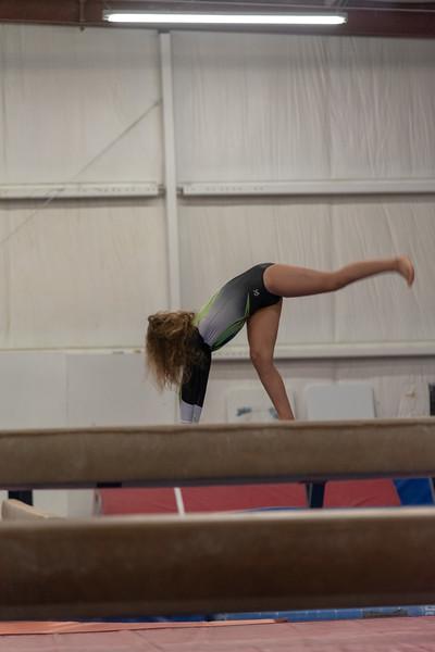 Brianna Gymnastics-0258.jpg