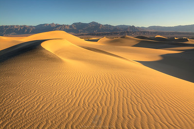 The Desert Southwest