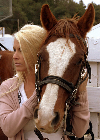 2010 Folsom Equine Challenge