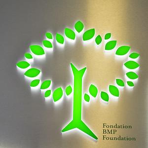 Fondation BMP albums photos