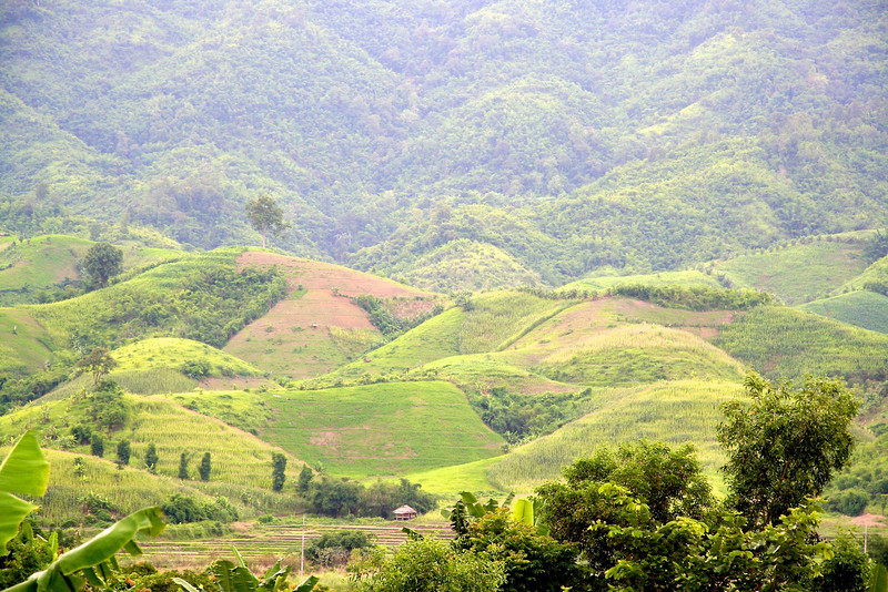 Day trip to Chiang Rai and Golden Triangle Visiting the long neck hill tribe