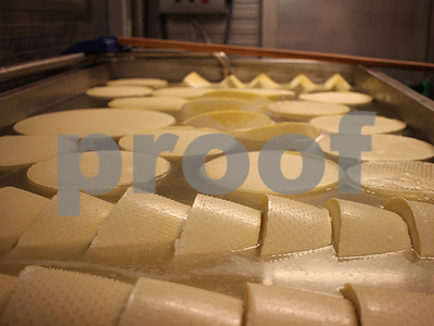 russian-cheesemakers-celebrate-european-sanctions-and-hope-they-continue