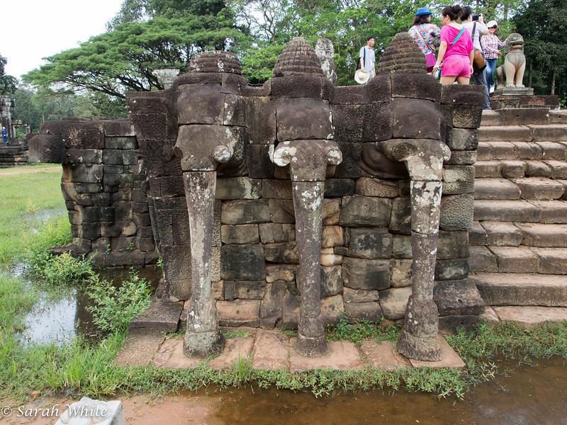 131109_ElephantTerrace_006.jpg