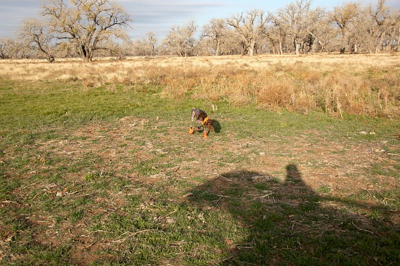 2008 KS Hunting Trip 1 - DSC_0246.jpg