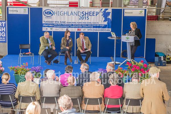 NSA Highland Sheep June 9th 2015