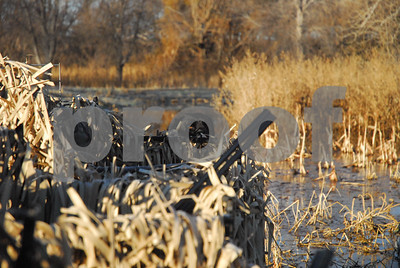 warm-weather-could-hamper-early-waterfowl-hunting