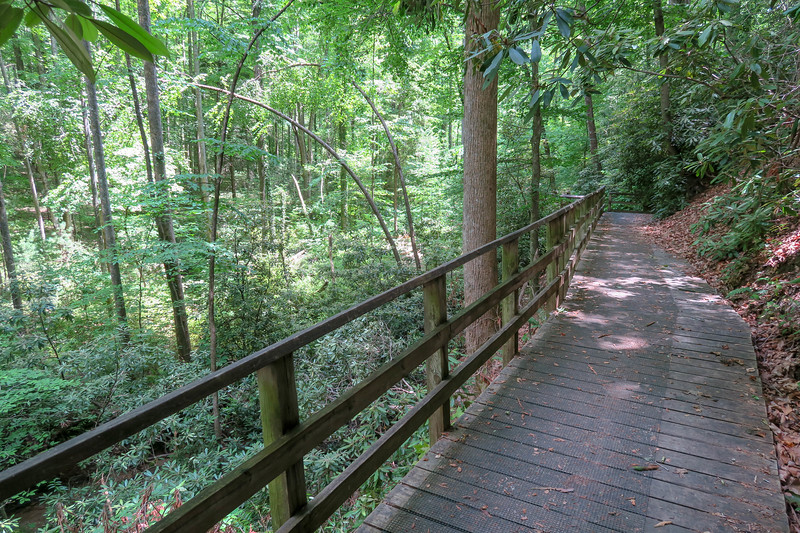 Andy Cove Nature Trail -- 2,200'