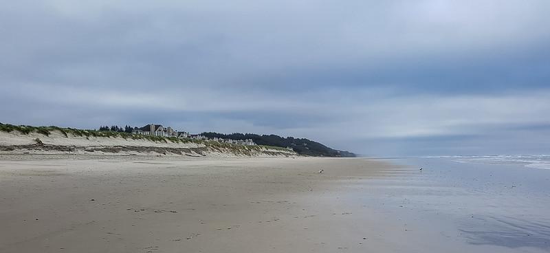 Beach walk with Mattie (8 of 20).jpg