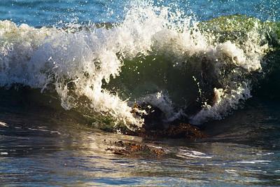 Oregon Waves