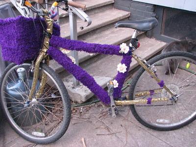 lani's bike