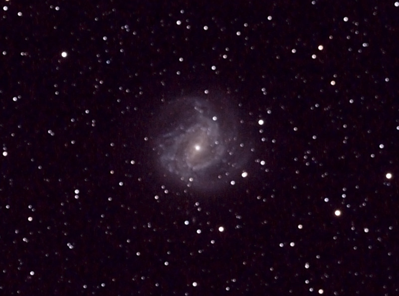 "Messier M83 - NGC5236 - Southern Pinwheel Galaxy - 19/5/2012 (Processed and cropped stack)  Taken at a dark sky site near Wagin, Western Australia.   Sadly, this was not quite focused - a bit of a waste of an hour of light gathering and travelling to a dark site! CHECK, THEN DOUBLE CHECK FOCUS! This shot was with my 80mm APO, luckily I intended to compare to a borrowed 8"" f/4.0 Newtonian this night ... so have a look at that image instead.  DeepSkyStacker 3.3.2 Stacked 85% of 15 Images ISO 800 300 Sec, 32 DARK, 0 BIAS, 31 FLATS, Post-processed by Photoshop CS5  Telescope - Apogee OrthoStar LOMO 80/480 with Hotech SCA Field Flattener,No filters, Canon 400D DSLR, Ambient 12C. Mount - Skywatcher NEQ6 Pro. Guidescope - Orion ShortTube 80 with Star Shoot Auto Guider."