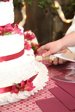 Reception: Cake, Bouquet and Garter