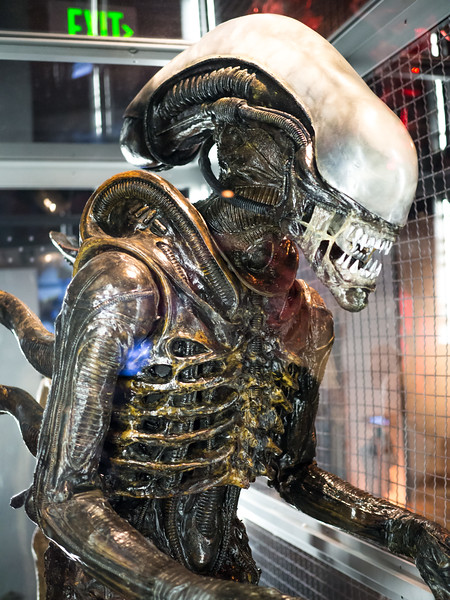 Horror expo at EMP Museum