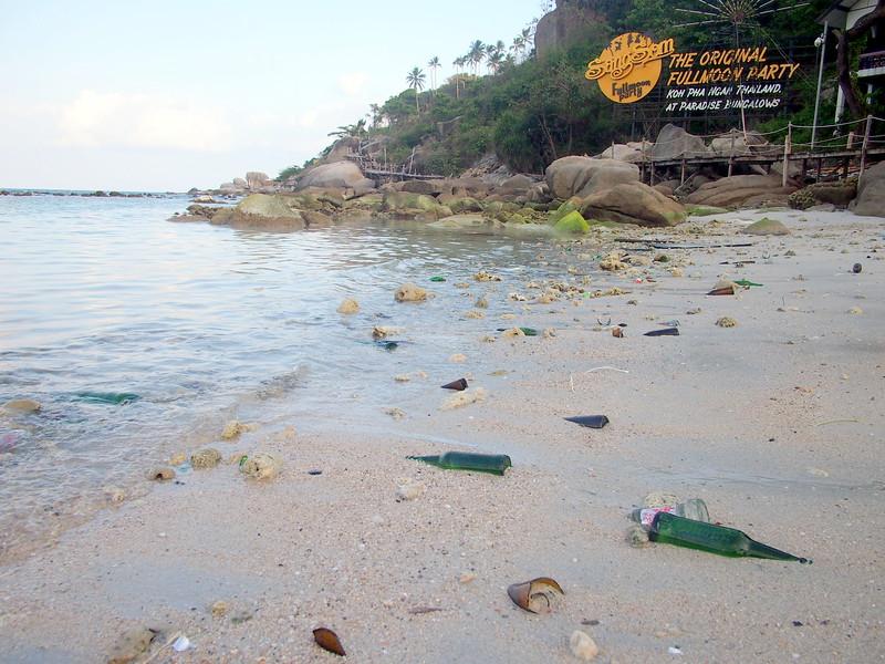 P3072960-bottles-on-beach.JPG