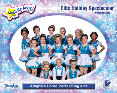 All Groups from the Elite Holiday at Disneyland
