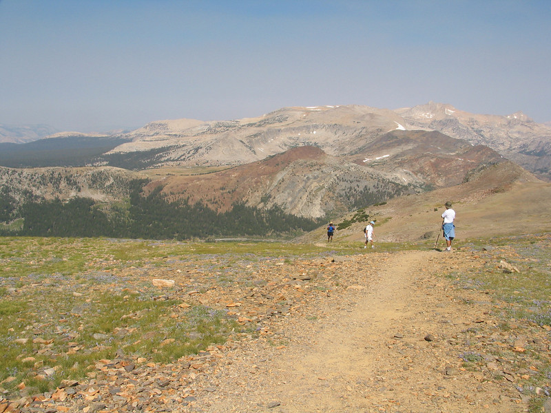 Mount Dana (15).jpg