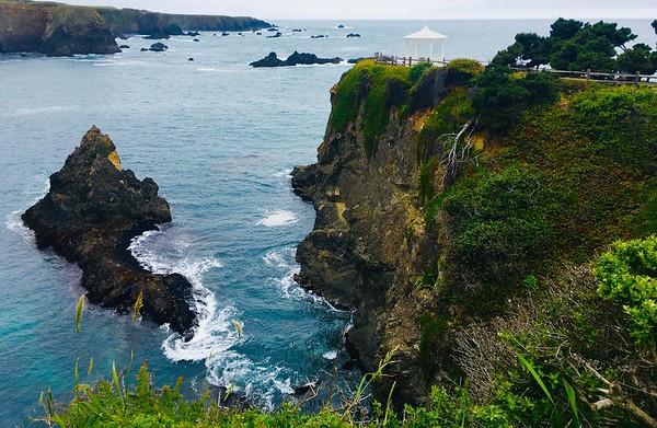 Mendocino Coast 2019