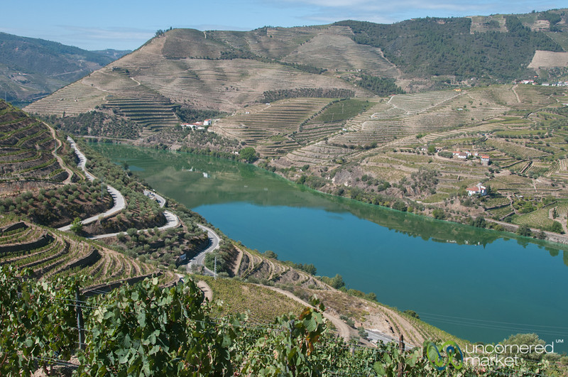 Douro Valley and Terraced Vineyards - Portugal