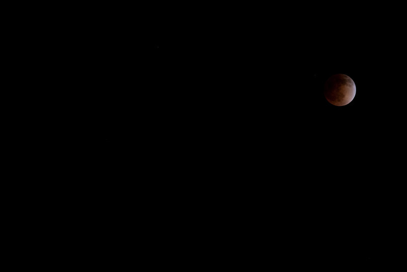 ClementineSanta-14.jpg