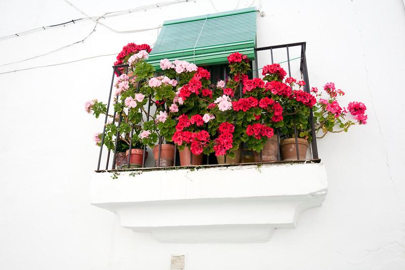 Balcony with flower, Jewish quarter, town of Valencia de Alcantara, province of Caceres, autonomous community of Extremadura, southwestern Spain