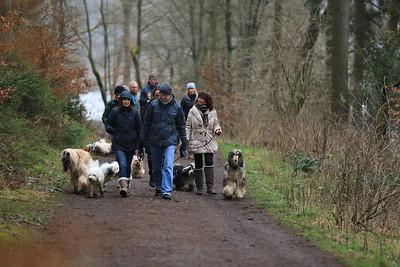 25.01.2014 Hundespaziergang IGT