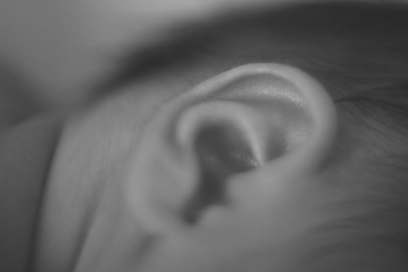 Pippa ear bw.jpg