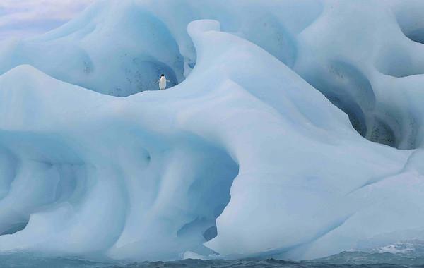 Antarctica - A Quiet Obsession