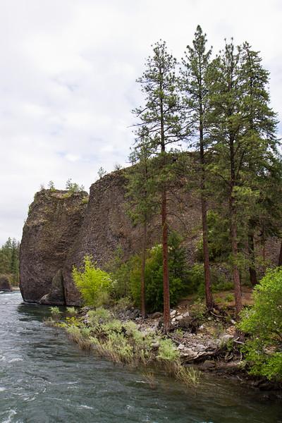Trees Boulders River