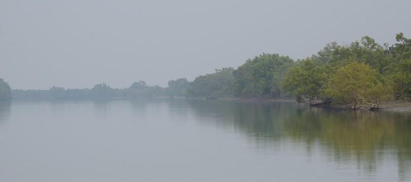 Sundarbans-scape.jpg