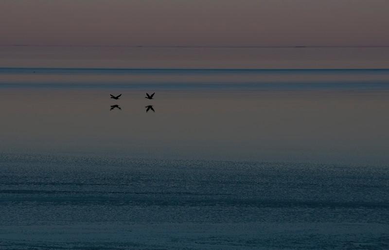 Salton Sea sunset colors