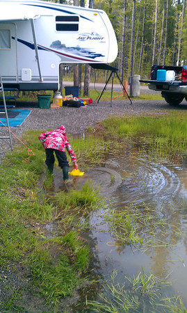 2011 Maclean Creek June