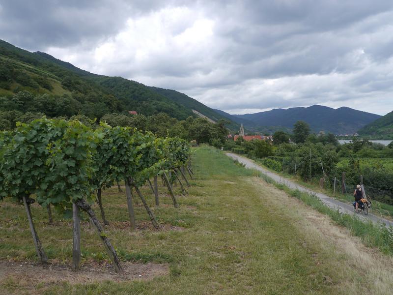 @RobAng 2013 / Schwallenbach, Schwallenbach, Niederösterreich, AUT, Österreich, 209 m ü/M, 31/07/2013 13:41:22