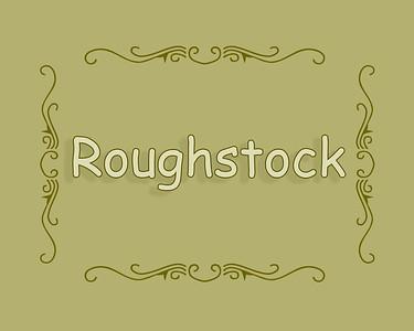 BIR 2019 Roughstock