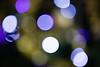 Christmas Tree - Churchlive.org - 'Step Into the Light' - Streaming Church Netcast from Windsor Uniting Church, Brisbane, Queensland, Australia.