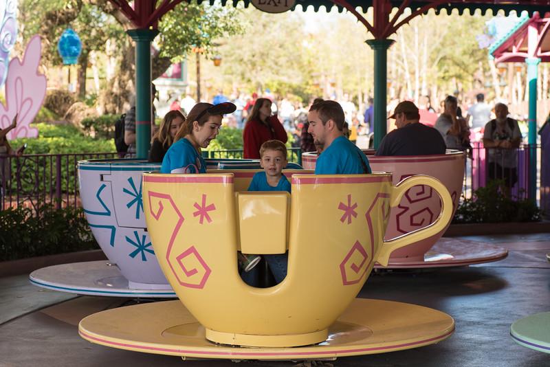 Mires sin teacups II.jpg